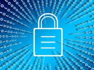 ¿Qué formación debe tener un experto en Ciberseguridad?