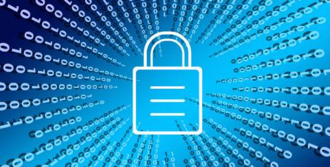 El experto en Ciberseguridad se ha convertido en una de las profesiones más demandadas
