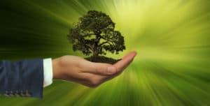 El emprendimiento sostenible tiene premio en España