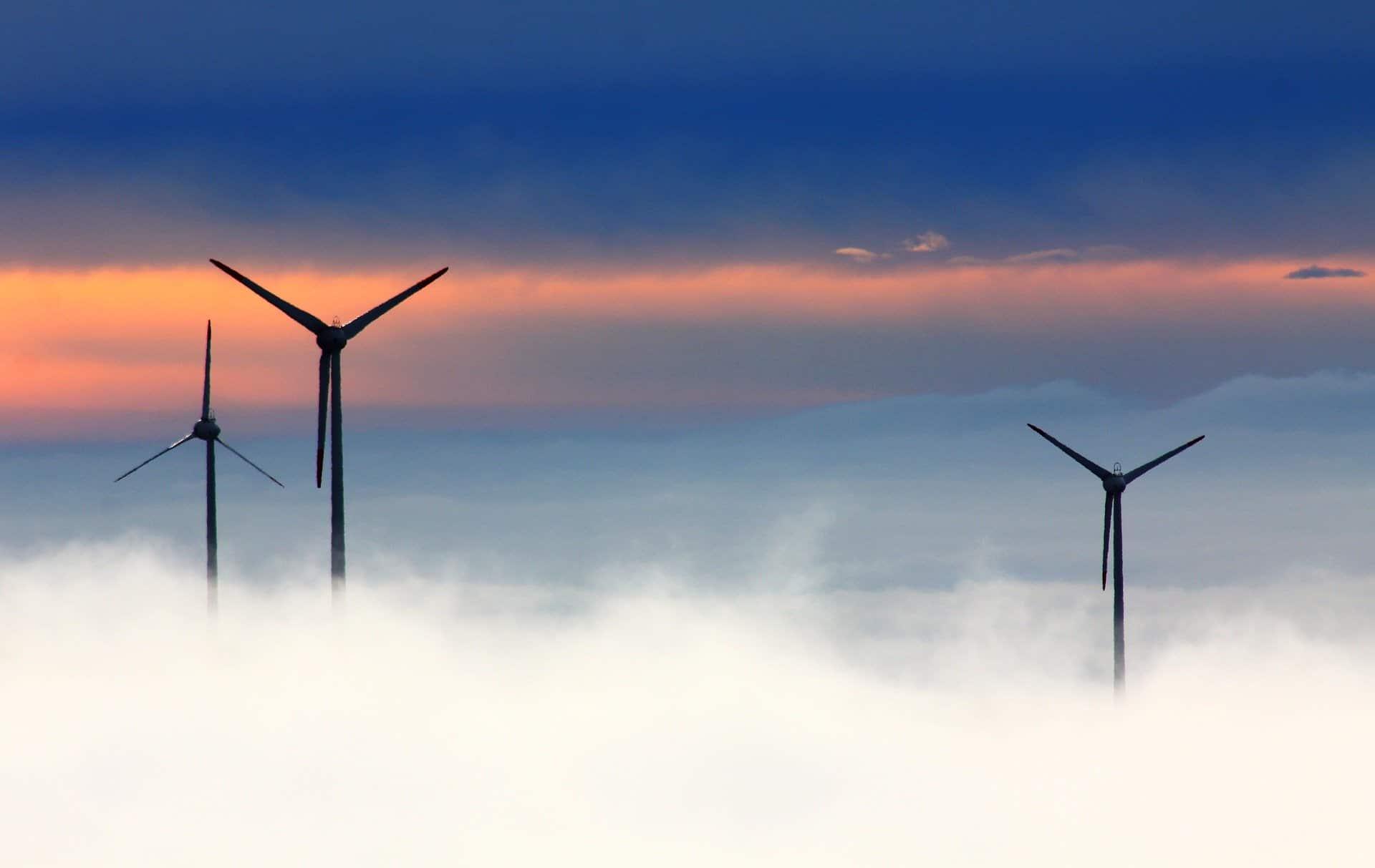 El empleo en la Economía Verde no deja de crecer